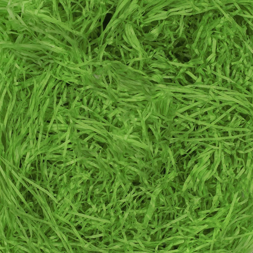 Paper Grass For Crafts Project Pack Of 50gm Dark Green
